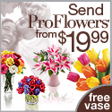 ProFlowers logo banner 125x125