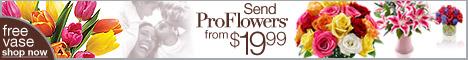 ProFlowers logo banner 468x60